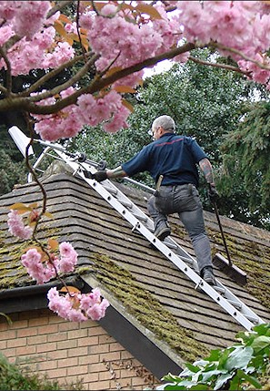 Our staff cleaning the moss from a roof in Woking